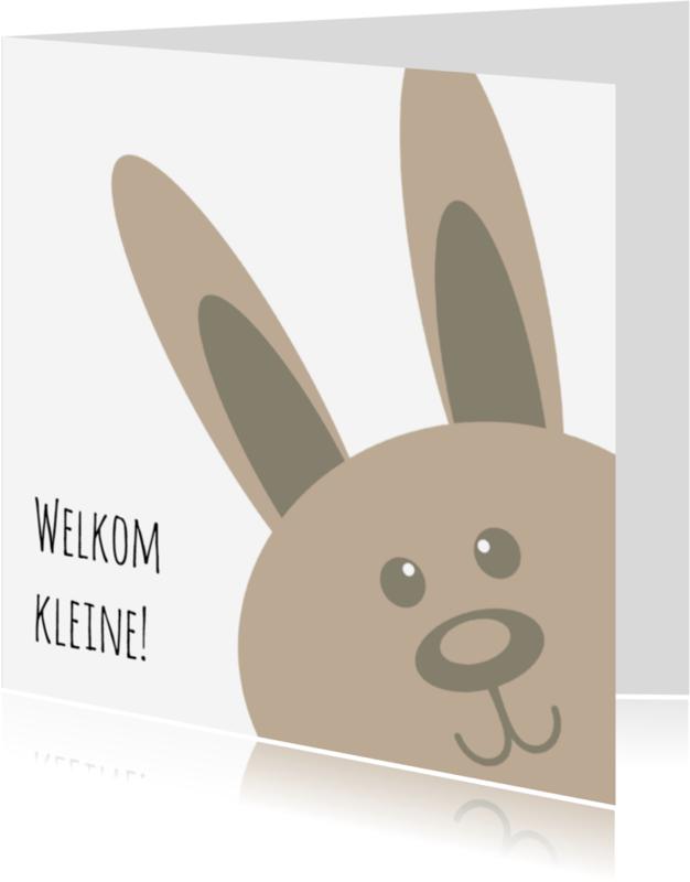 Geboortekaartjes - Adoptie met konijn - DH