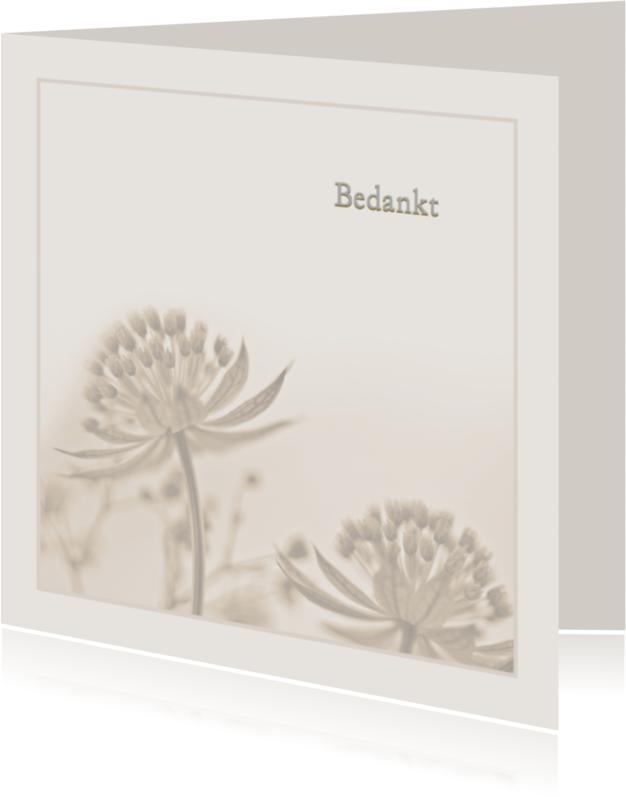 Rouwkaarten - Bedankkaart na overlijden-Zeeuws knoopje