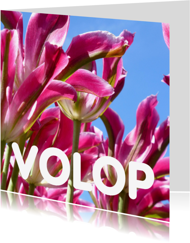 Bloemenkaarten - Bloemenkaarten  Roze tulpen- AW