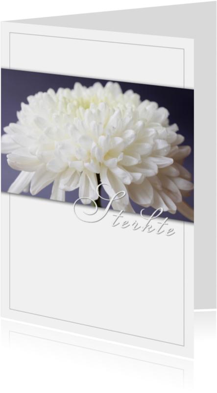 Condoleancekaarten - Chrysant in bloei
