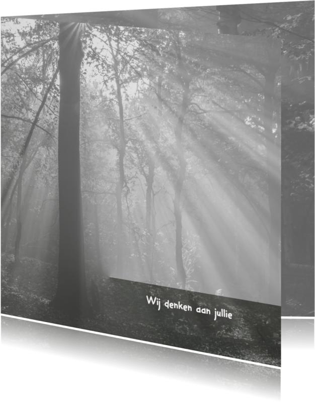 Condoleancekaarten - Condoleance zonneharp zw-w