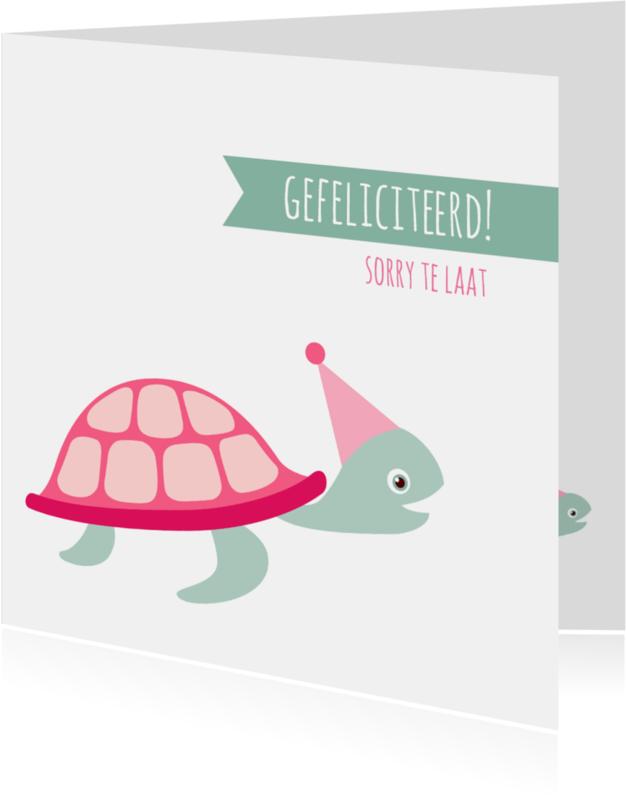 Verjaardagskaarten - Felicitatiekaart te laat schildpad - HB