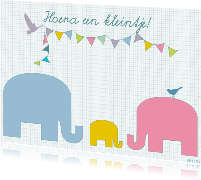 Geboortekaartjes - geboortekaart olifantjes