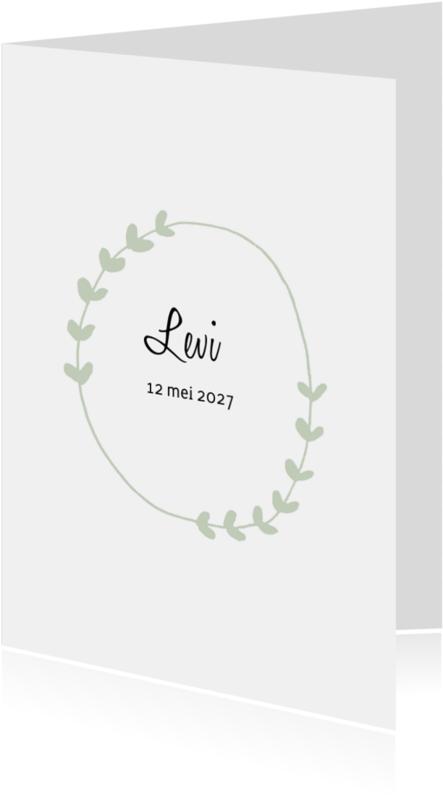 Geboortekaartjes - Geboortekaartje Levi - HM