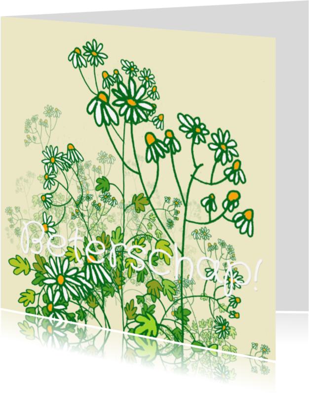 Beterschapskaarten - Kamille plant beterschapskaart