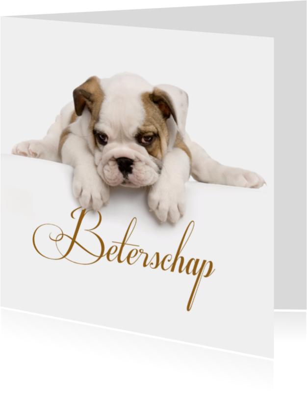Beterschapskaarten - Lief moe hondje-isf
