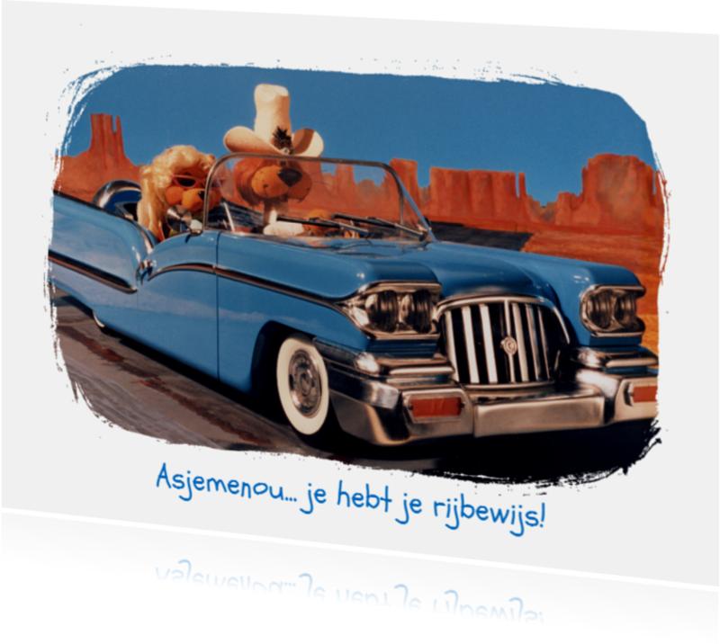 Felicitatiekaarten - Loeki de Leeuw en Roos Cadillac