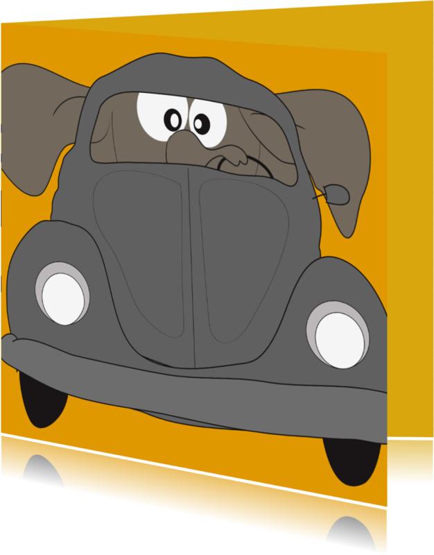 Geslaagd kaarten - Mo Card humor rijbewijs eend