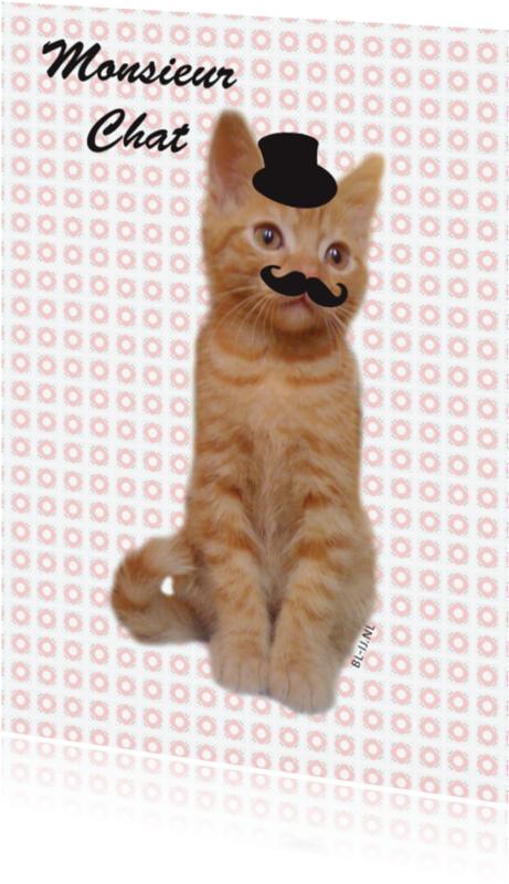 Dierenkaarten - monsieur chat
