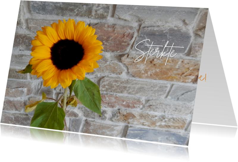 Sterkte kaarten - Sterkte zonnebloem natuursteen