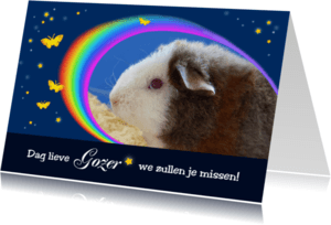 Condoleancekaarten - Afscheid huisdier - regenboog - sterren