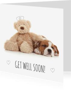 Beterschapskaarten - Beterschap - Puppy met knuffel