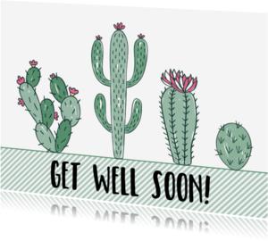 Beterschapskaarten - Beterschapskaart Cactus - WW