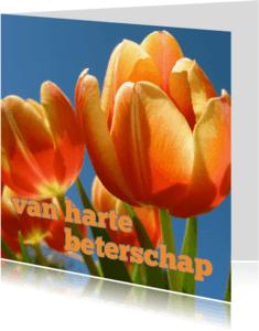Beterschapskaarten - beterschapskaart tulpen VII -LB