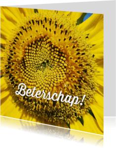 Beterschapskaarten - beterschapskaart zonnebloem - LB