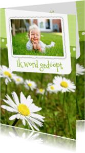 Doopkaarten - Bloemenkaart Madelief doop - BK