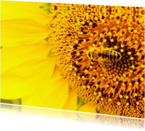 Bloemenkaarten - Bloemenkaart wesp - BK