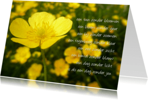 Gedichtenkaarten - boterbloem zonder jou