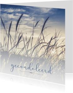 Condoleancekaarten - Condoleance - gecondoleerd
