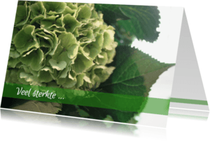 Condoleancekaarten - Condoleance hortentia
