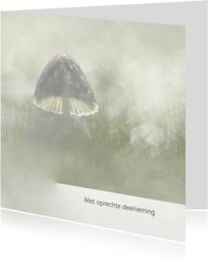 Condoleancekaarten - Condoleance paddenstoel/herfst