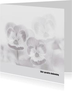 Condoleancekaarten - Condoleance violen