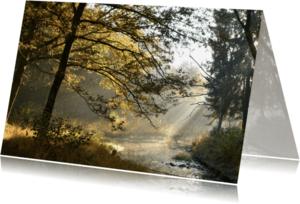 Condoleancekaarten - Condoleance vroege ochtendzon