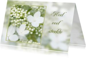 Condoleancekaarten - Condoleancekaart-Hortentia
