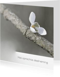 Condoleancekaarten - Condoleren met sneeuwklokje
