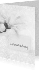 Condoleancekaarten - Deelneming met magnolia -recht-