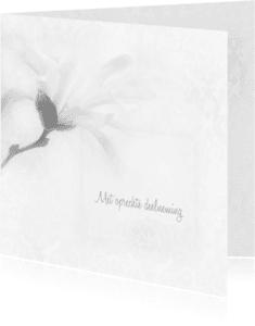 Condoleancekaarten - Deelneming met magnolia vierkant