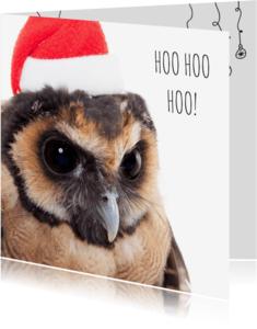 Kerstkaarten - Dieren Kerstkaart - Uil - Santa