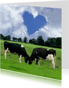 Trouwkaarten - Echte liefde Koeien
