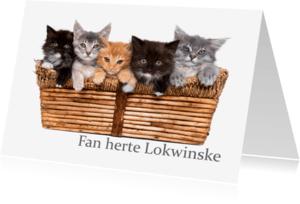 Fryske kaartsjes - Fan herte lokwinske Poeskes boefkes