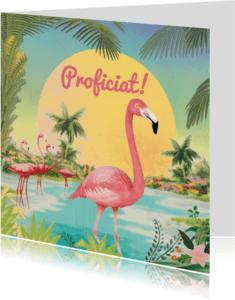 Dierenkaarten - funky flamingo
