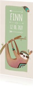Geboortekaartjes - Geboorte indiaan luiaard langwerpig - BK