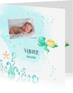 Geboortekaartjes - Geboortekaart jongen - waterschildpad