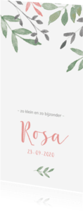 Geboortekaartjes - Geboortekaartje botanisch met roze en groene takjes