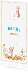 Geboortekaartjes - Geboortekaartje muisjes, meisje