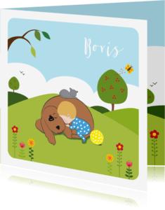 Geboortekaartjes - Geboortekaartje slapend jongetje  met vriendjes