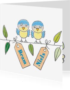 Geboortekaartjes - Geboortekaartje tweeling meesjes