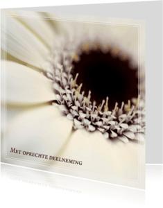Condoleancekaarten - Gecondoleerd IV