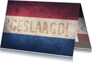 Geslaagd kaarten - GESLAAGD Nederlandse vlag - DH