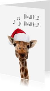 Kerstkaarten - Giraf met kerstmuts-isf