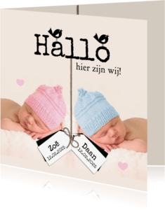 Geboortekaartjes - Hallo, hier zijn wij-isf