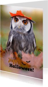 Halloween kaarten - Happy Halloween Owl