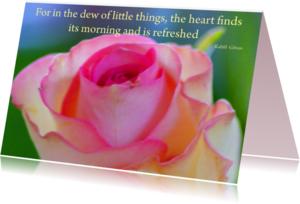 Religie kaarten - In the dew of little things