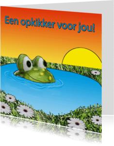 Vriendschap kaarten - Kaart met kikker, als opkikker
