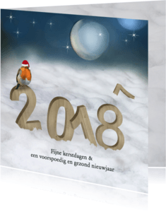 Kerstkaarten - Kerstkaart 2017-2018 houtprint