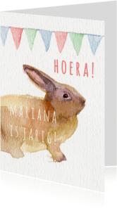 Verjaardagskaarten - Lief konijntje verjaardagkaart